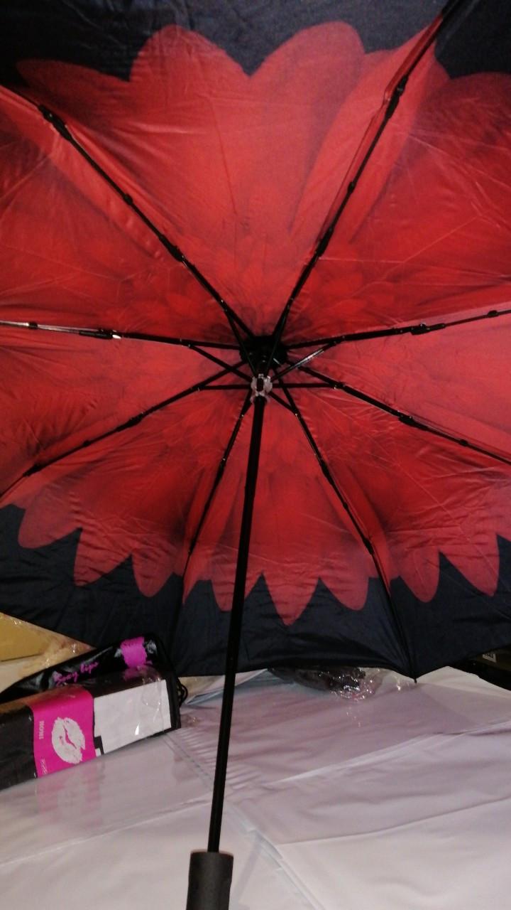 Зонт AL170010