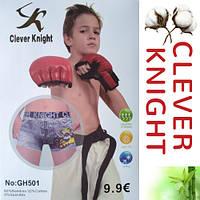 Детские подростковые боксеры GH501 Clever Knight от 6 до 15 лет в упаковке ТДБ-2999, фото 1