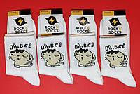 """Шкарпетки з приколами демісезонні Rock'n ' socks Кіт.""""Ой всі"""" 444-42 Україна one size (37-44р) НМД-0510437"""