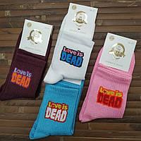 """Шкарпетки з приколами демісезонні V. I. P. """"LOVE IS DEAD"""" Україна 36-41р 4 кольори асорті НМД-0510805"""