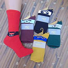 Носки женские высокие деми UYUT men cotton socks хлопок мордочки ассорти 20007638