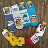 Носки новогодние женские махра Смалий Рубежное Украина 23-25 размер НЖЗ-010868