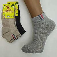 Шкарпетки дитячі підліткові з сіткою для хлопчика, ЖИРОМИР, 16-18р, асорті, 20017392