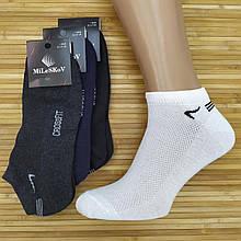 Шкарпетки чоловічі з сіткою короткі SPORT Mileskov UZ, р. 41-45, асорті, 20014124