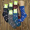 Женские носки махра зимние ТОП-ТАП Житомир Украина 23-25 размер конфеты НЖЗ-010864