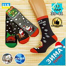 """Шкарпетки жіночі новорічні махрові """"Слід Лева"""" 39-41р машина асорті 20040192"""