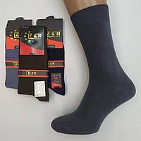 Мужские носки демисезонные cotton Z&N Турция 41-44р ассорти НМД-0510812, фото 1