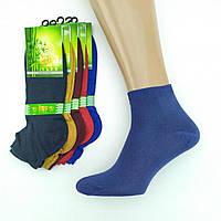 Мужские носки демисезонные короткие BYT club Турция 41-44р однотонные,яркое ассорти, 20023058