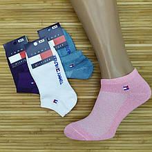 Шкарпетки жіночі з сіткою короткі SPORT ТН Туреччина, р. 36-41, кольорове асорті, 20014223