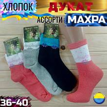 Носки зимние с махрой женские Дукат Украина ассорти 36-40р НЖЗ-01716