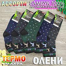Носки женские махровые средние Bambu 36-41р олени ассорти
