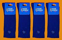 Шкарпетки з приколами вишивка демісезонні Neseli Coraplar Daily 5988 Туреччина one size (37-43р) НМД-0510538