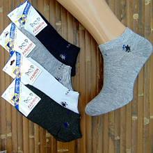 Шкарпетки чоловічі літні короткі тоненькі KAERDAN 41-47р.безшовні SPORT асорті 20008338
