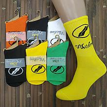 Носки мужские высокие деми UYUT men cotton socks хлопок 39-42р. Wildone ассорти 20007607