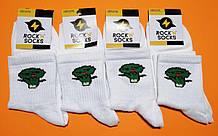 Носки с приколами демисезонные Rock'n'socks 444-11 Украина one size (37-44р) НМД-0510484