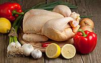 Свежее мясо курицы оптом