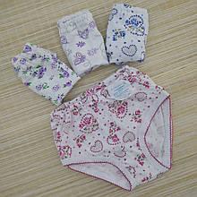 Трусы трикотажные для девочки р.72 УКРАИНА, ассорти, 20026806