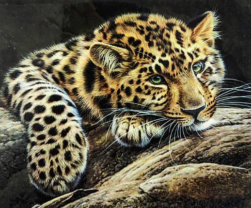 """Алмазная Мозаика на подрамнике . Набор алмазной вышивки на подрамнике """"Леопард 3"""". Размер 40*30 см., фото 2"""