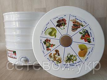 Сушка электрическая для фруктов овощей и грибов РОТОР / ДИВА  сушилка 25 литров, фото 2