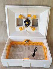 Автоматический ламповый инкубатор Теплуша 72 NEW 2018, фото 2