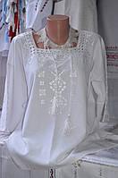 """Жіноча вишита блузка """"Ольга"""", фото 1"""
