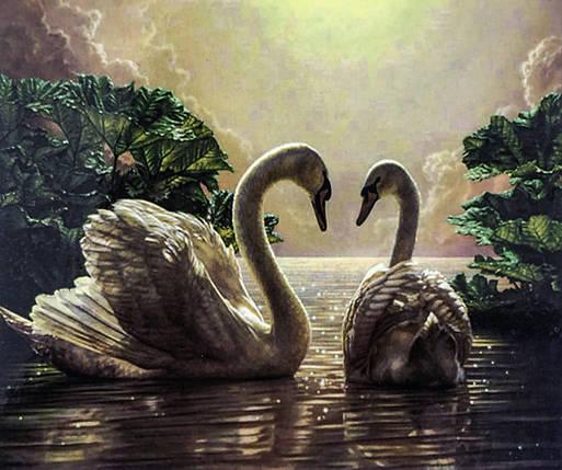 """Алмазная Мозаика на подрамнике . Набор алмазной вышивки на подрамнике """"Пара лебедей"""". Размер 40*30 см., фото 2"""