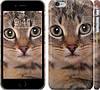 "Чехол на iPhone 6 Plus Полосатый котик ""2978c-48"""