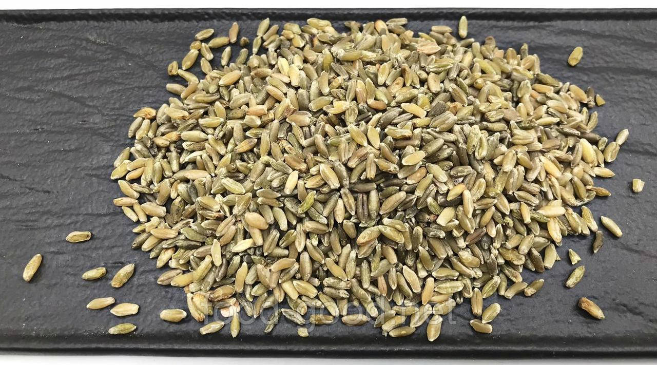 Зеленые зерна пшеницы Фрике, 1кг