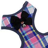 Шлея для собак с поводком бабочка и колокольчик Taotaopets 232216 L Multi Color Lines (5520-18197), фото 2