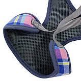 Шлея для собак с поводком бабочка и колокольчик Taotaopets 232216 L Multi Color Lines (5520-18197), фото 3