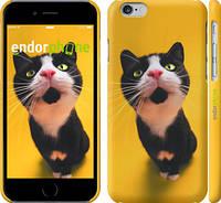 "Чехол на iPhone 6 Чёрно-белый кот на жёлтом фоне ""139c-45"""