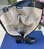 Женские зимние сапоги Respect оригинал натуральная кожа шерсть 38, фото 4