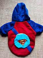 Кофта утепленная синяя Человек паук одежда для собак размер М