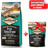 Сухий корм для собак Carnilove Fresh Carp & Trout з м'ясом карпа і форелі 12 кг