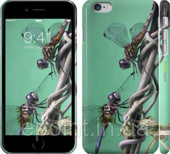 """Чехол на iPhone 6 Plus Стрекозы """"933c-48"""""""