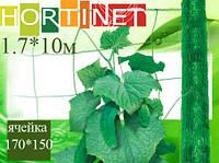 Шпалерная сетка HORTINET зеленая10 x 1,7(S17м.кв) ячейка 170х150