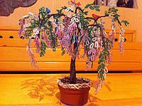 Дерево глициния из бисера   ручная работа