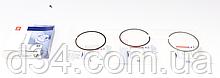 Кольца 1.6dCi +0.5 Рено Трафик 14-
