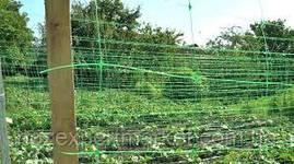 Сітка шпалерна Огіркова-Квіткова 1.7х500м УГОРЩИНА, фото 2