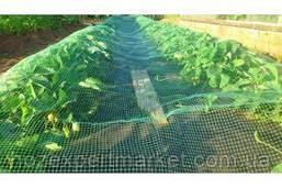 Сітка садові 1 МЕТР ВИСОТА, НА МЕТРАЖ, пластикова, забори.Ячейка 10х10 мм, фото 3