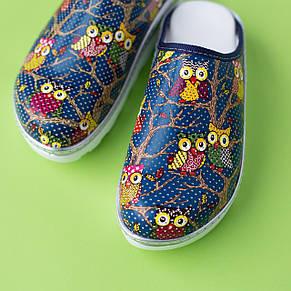 Медицинская обувь сабо совы синие, фото 2