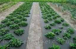 "Агроволокно ""Agreen"" 42g/m2,(ЧЕРНОЕ) 3.2х100м,(ПОЛЬША) СПАНБОНД, фото 3"