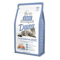 Brit Care (Брит кеа) Cat Daisy корм с индейкой и рисом для кошек с избыточным весом, 2 кг