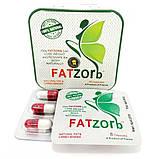 Fatzorb Фатзорб. Французский препарат для похудения., фото 3