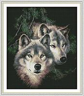 Пара волков Набор для вышивки крестом  канва 14ст