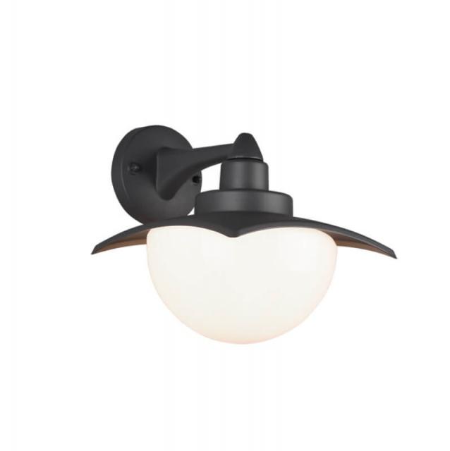 Настенный уличный светильник TRIO DONEZ 204960142