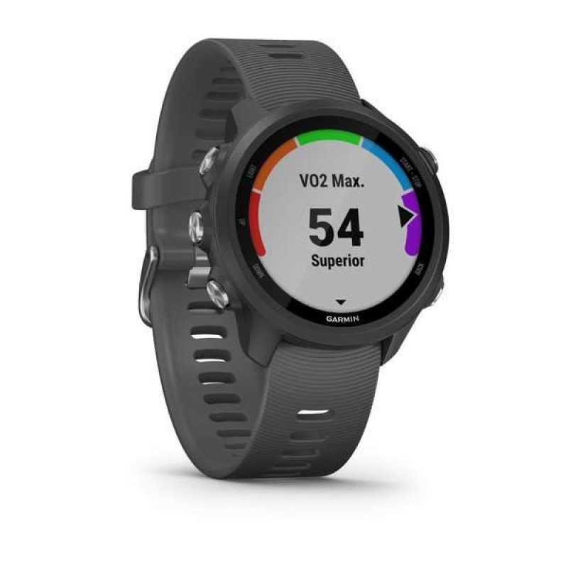 Спортивные часы Garmin Forerunner 245 Slate Gray