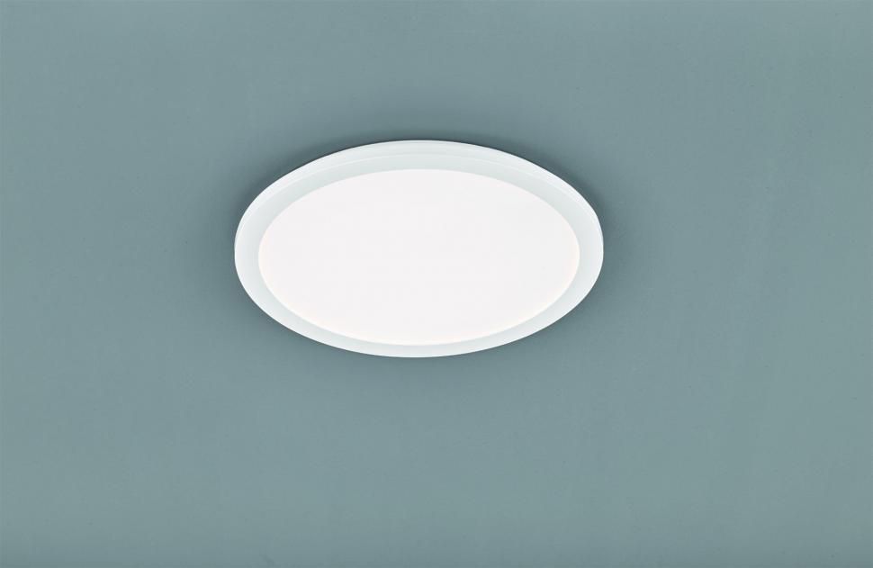 Потолочный светильник Trio Reality R62922401 CAMILLUS