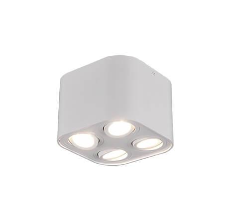 Точечный светильник TRIO BISCUIT 612900431