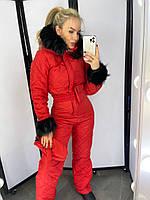 Женский лыжный комбинезон   Магдалена, фото 1